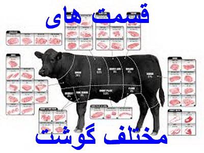 قسمت های (برش) گوشت گاو و گوسفند