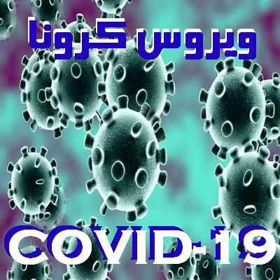 تمامی نکات در خصوص مراقبت و پیشگیری  از شیوع ویروس کرونا